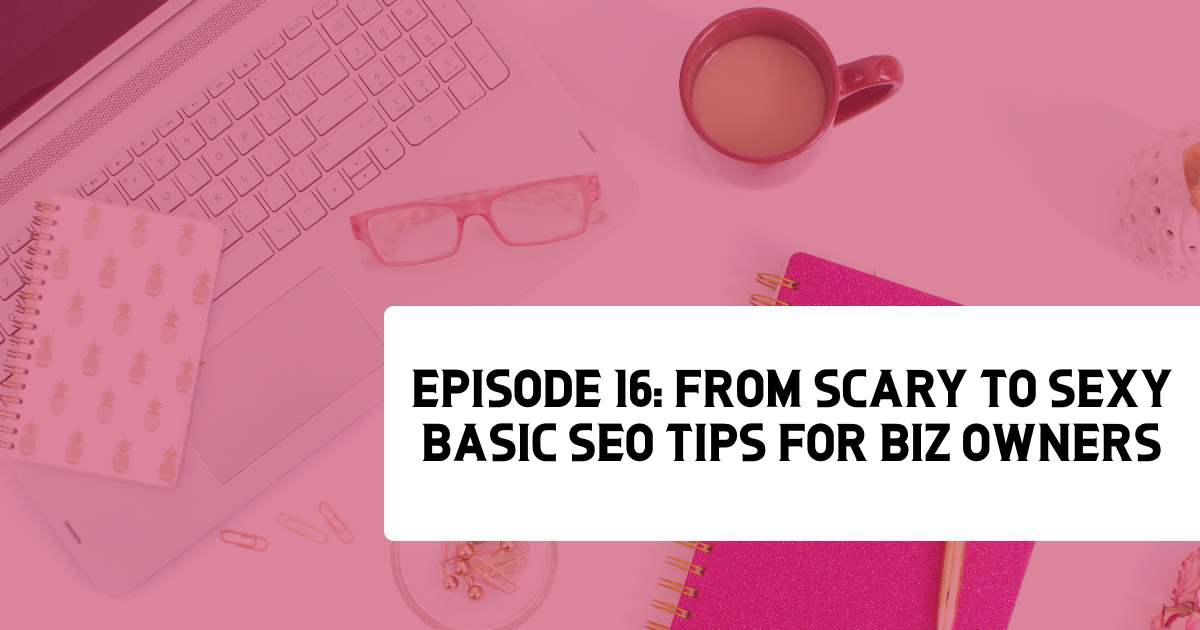 Episode 16 - From Scary to Sexy: Basic SEO Tips for Biz Owners